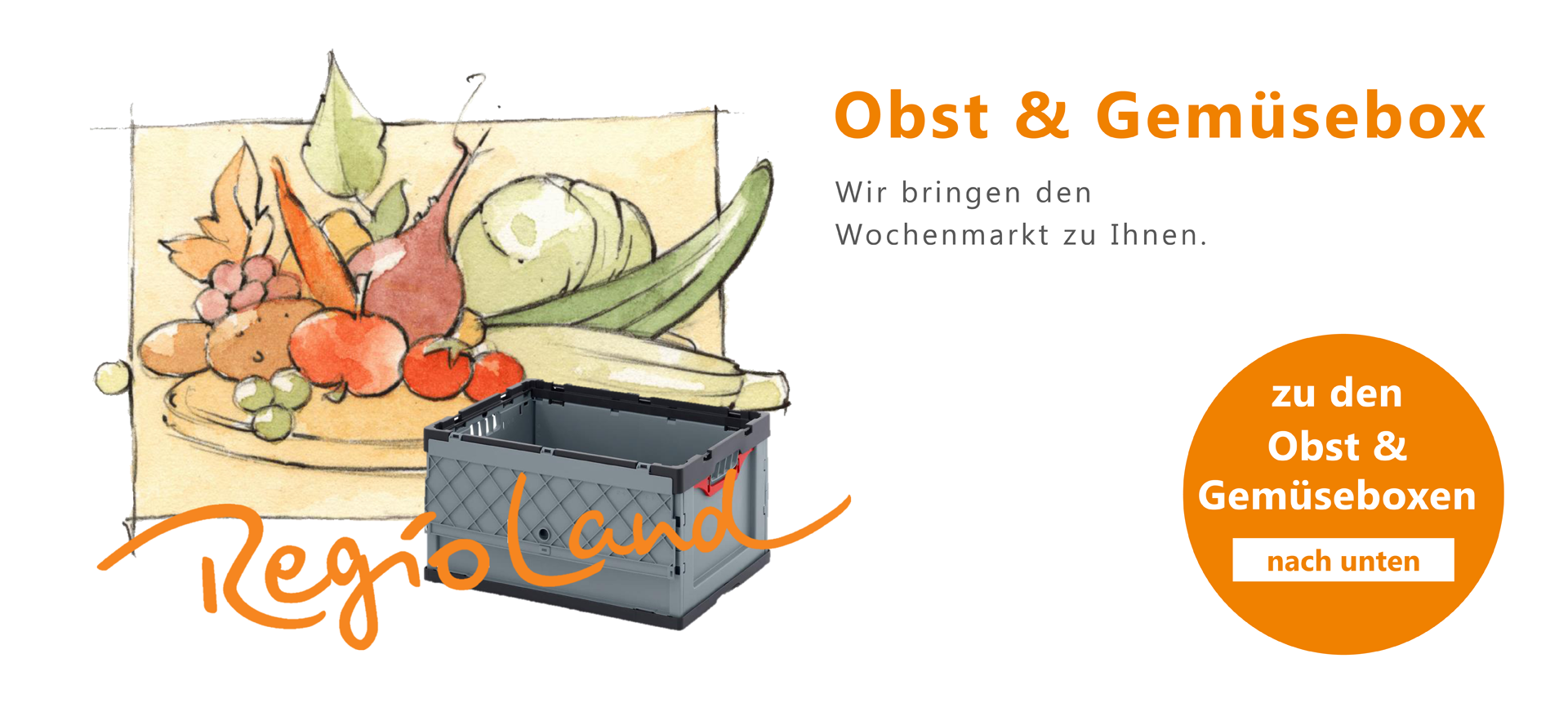 regio-land-obst-und-gemuesebox-2